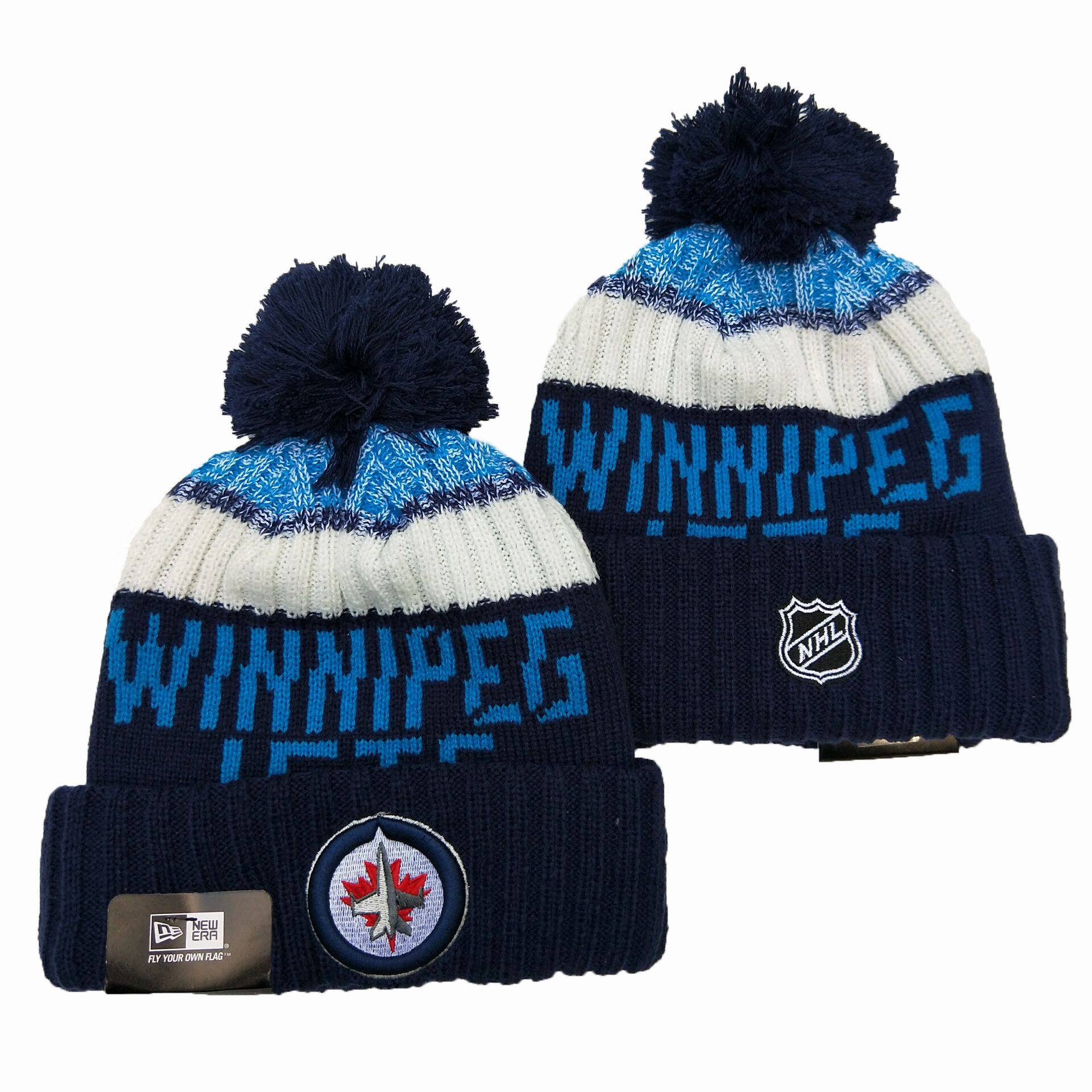 Winnipeg Jets Team Logo Black Pom Knit Hat YD