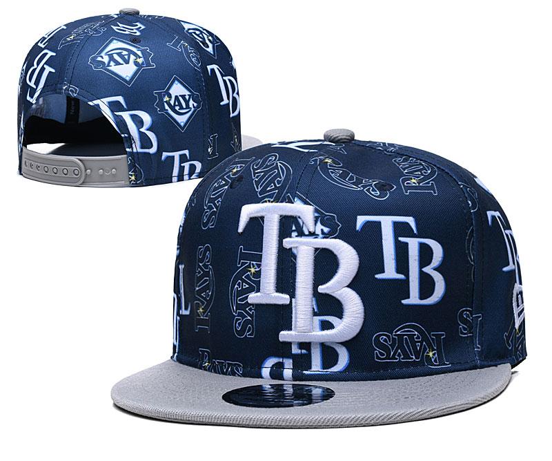 Rays Team Logos Navy Gray Adjustable Hat TX