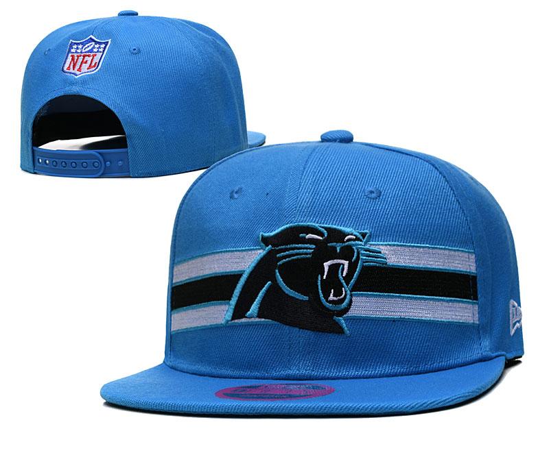 Panthers Team Logo Blue Adjustable Hat TX